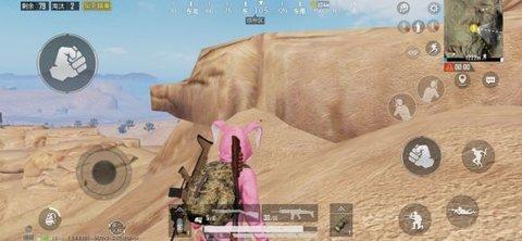 和平精英网红猪在哪里 沙漠网红猪打卡点位置一览