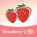 草莓公园安卓版